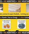 4-x-200g-tubs-of-pure-Baobab-Fruit-Powder-direct-from-baobab-harvesting-company-0-8